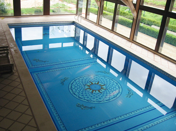 d shumidification piscine spa 74 annemasse saint julien
